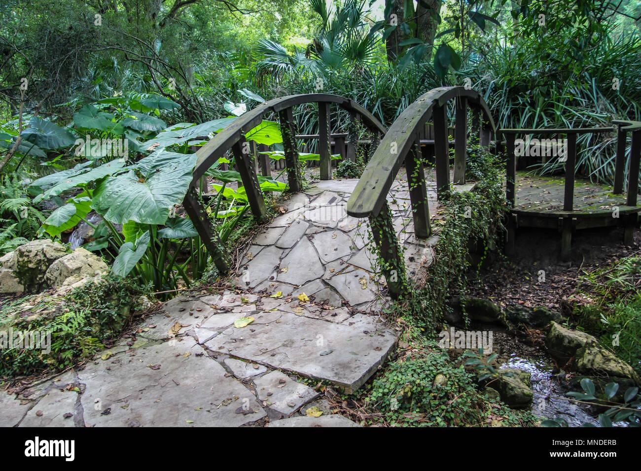 kanapaha botanical gardens in gainesville florida - Gainesville Botanical Garden