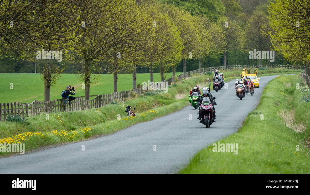 Motorbike outriders & cyclists in pack, competing in Tour de Yorkshire 2018, racing on scenic countryside lane - Ilkley, North Yorkshire, England, UK. - Stock Image