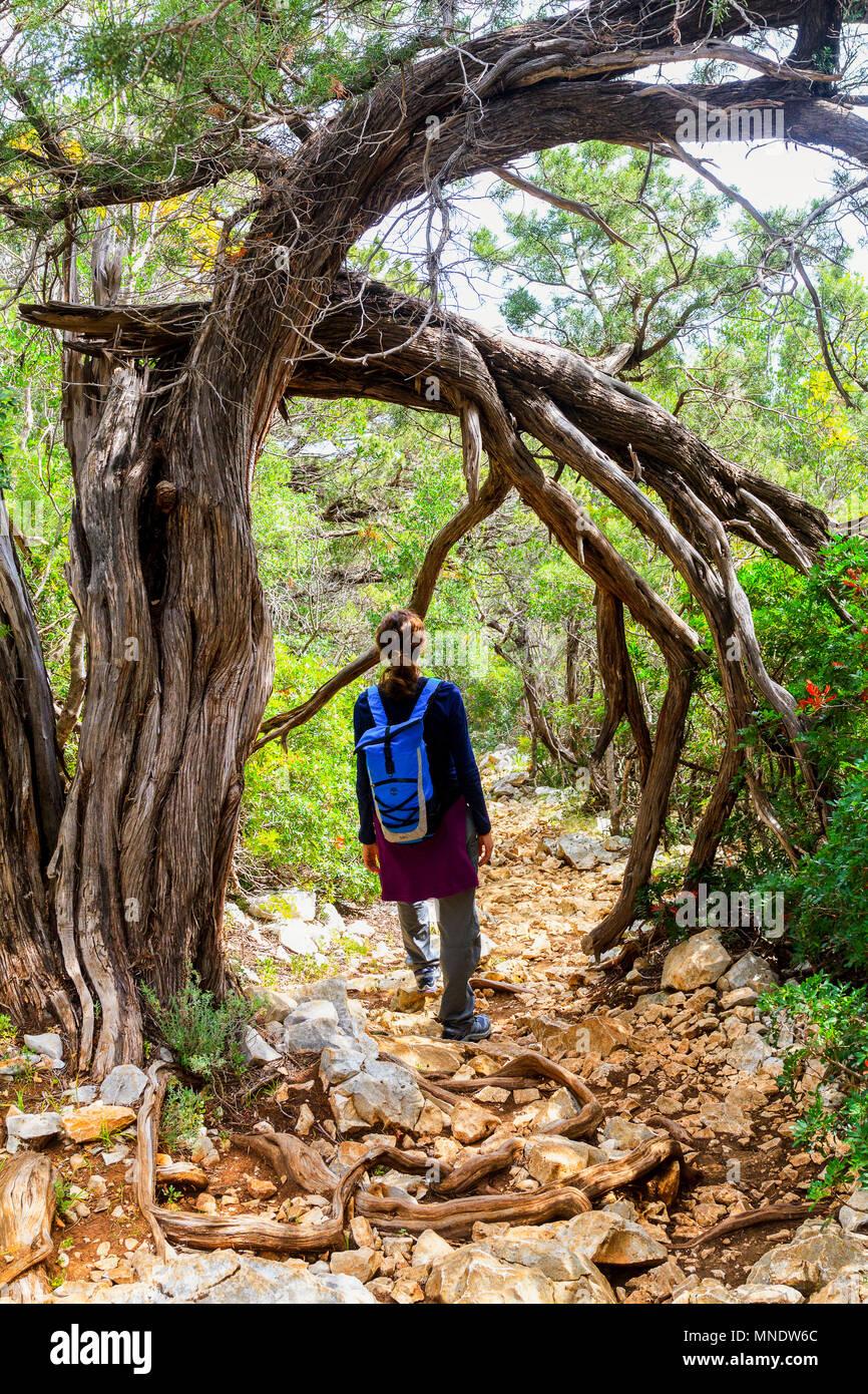 Italy Sardinia 'Selvaggio Blu' itinerary - Stock Image