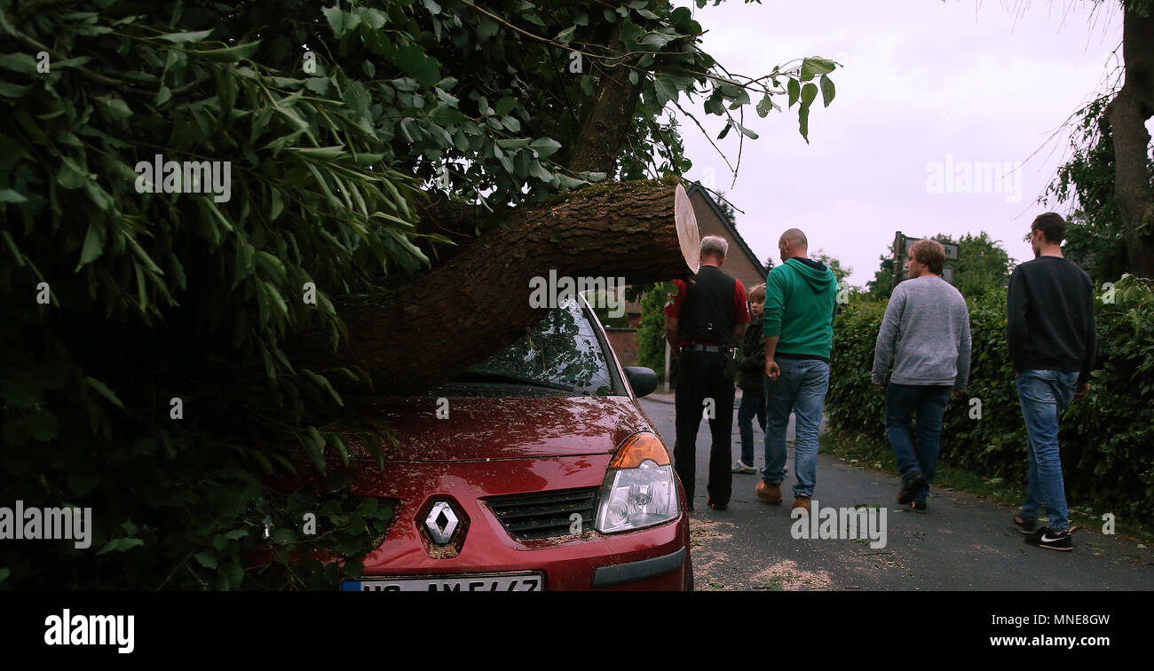 16 May 2018, Germany, Schwalmtal: A tree lying on a parked car after a wind storm. The tornado has, according to authorities, a wreaked 'a path of destruction'. At least one person has been badly injured by the windstorm. Photo: David Young/dpa - Stock Image