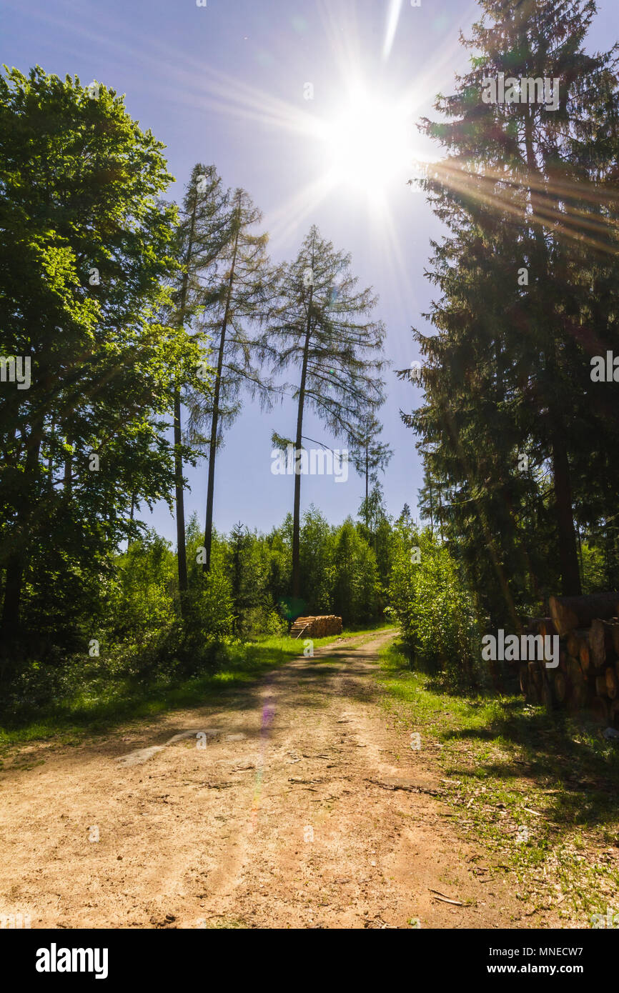 Hiking on a beautiful spring day in Reinprechts/ Heinrichs - Weitra - Lower Austria, Europe - Stock Image