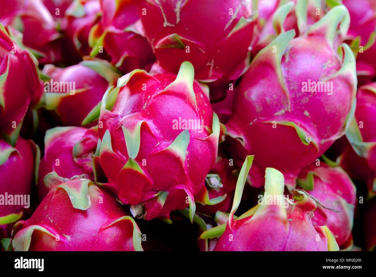 Dragon fruit - Stock Image