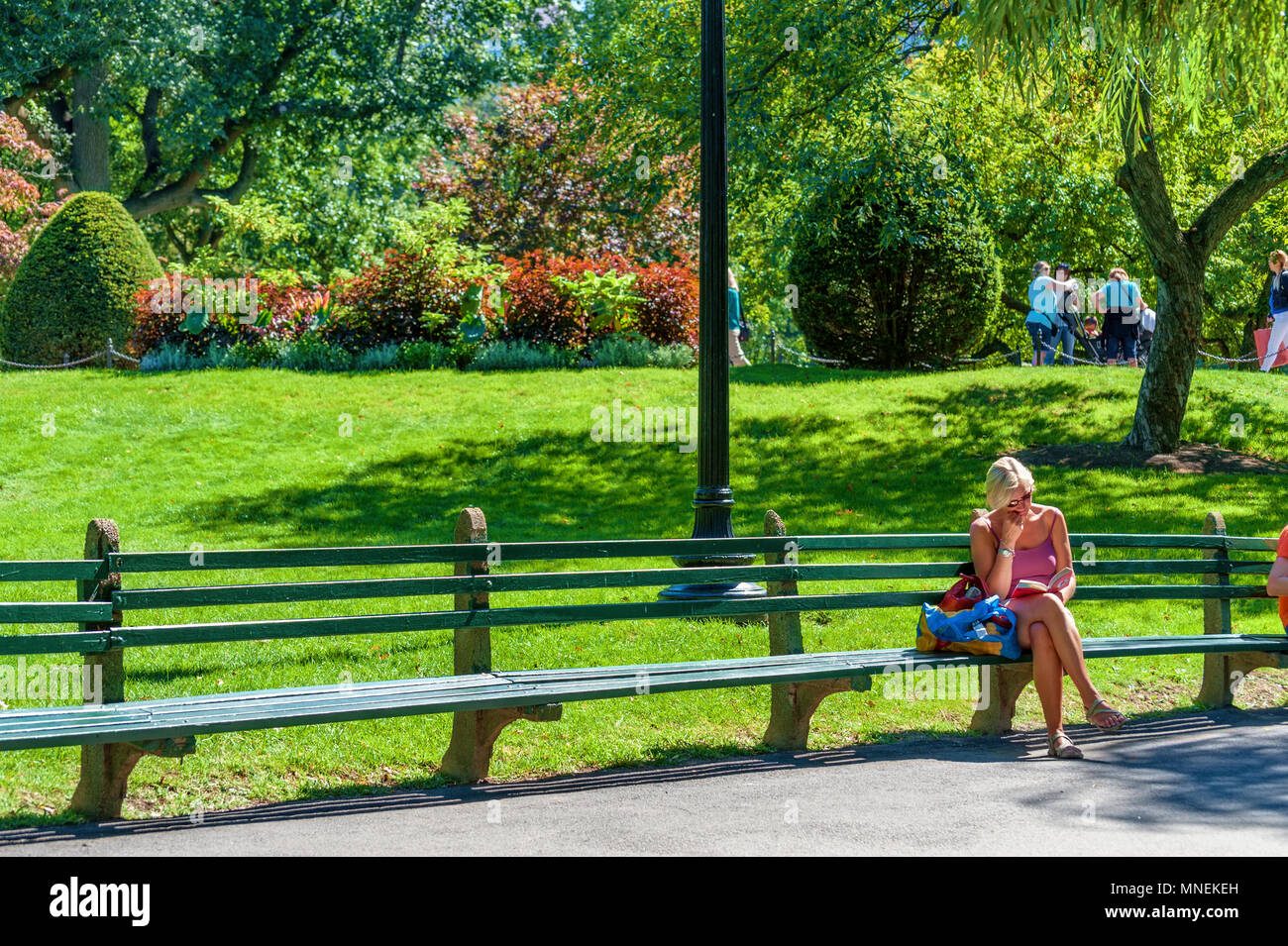Boston, Massachusetts, USA - September 12, 2016: A lady sits on a park bench reading a book in Boston Public Garden, in Boston, Massachusetts Stock Photo