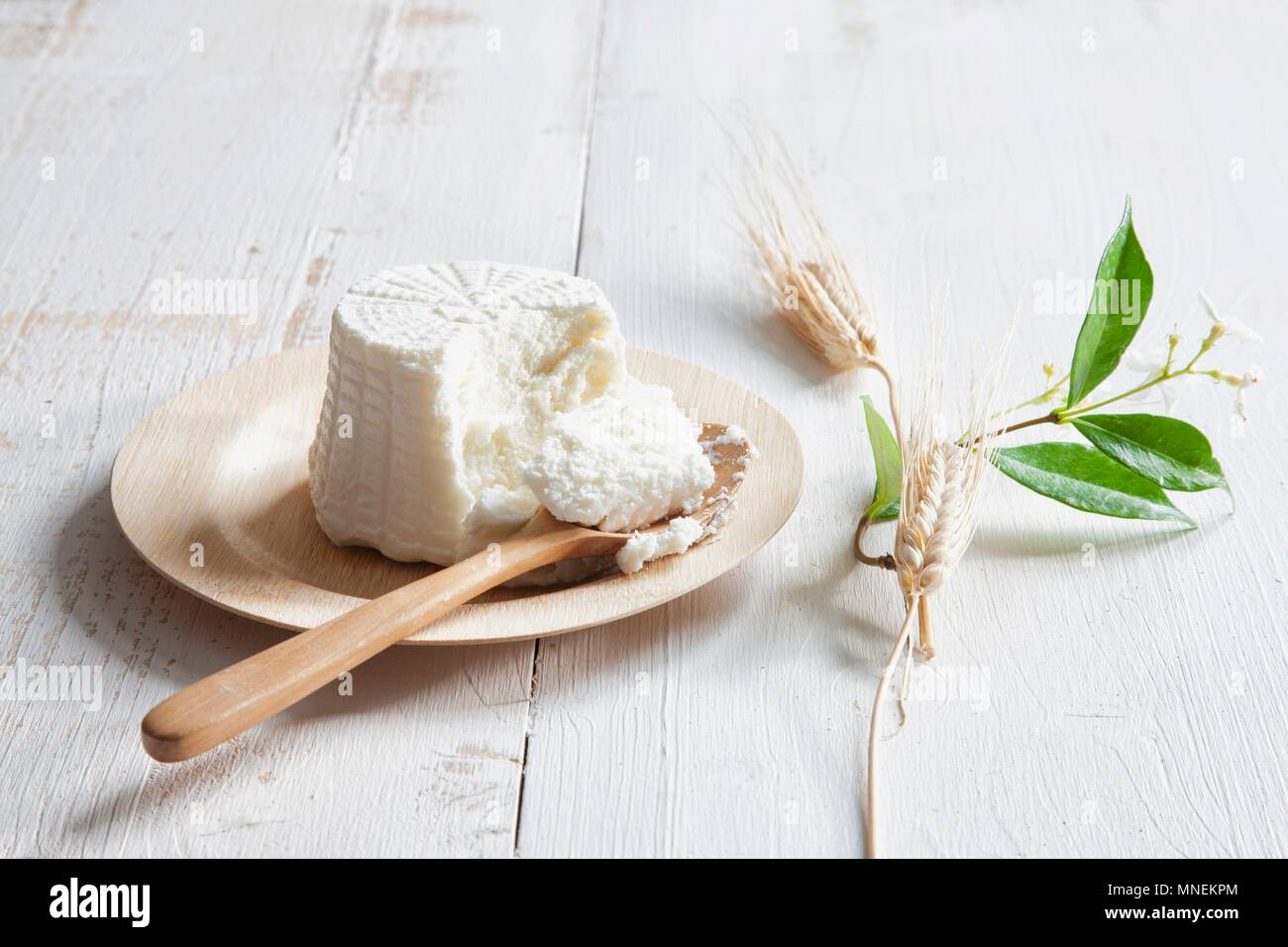 Ricotta on a plate with a wooden spoon - Stock Image