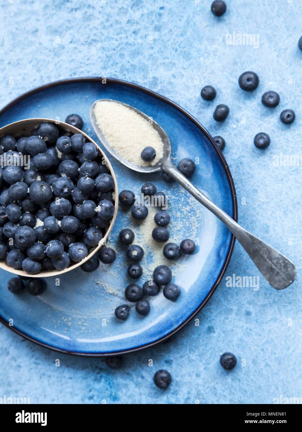 Blueberries with sugar - Stock Image