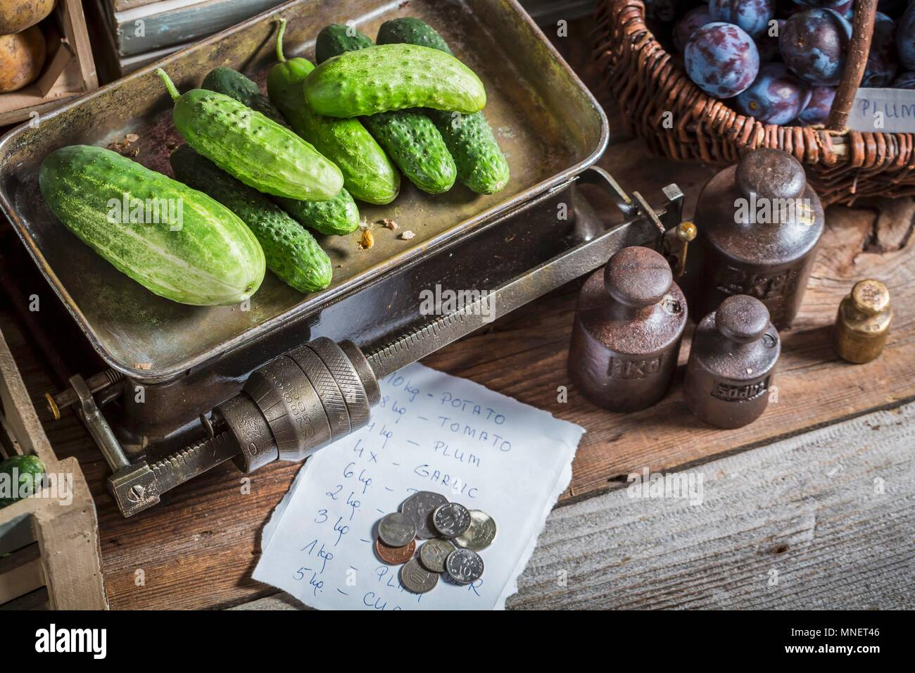 Cucumbers on an old pair of scales - Stock Image