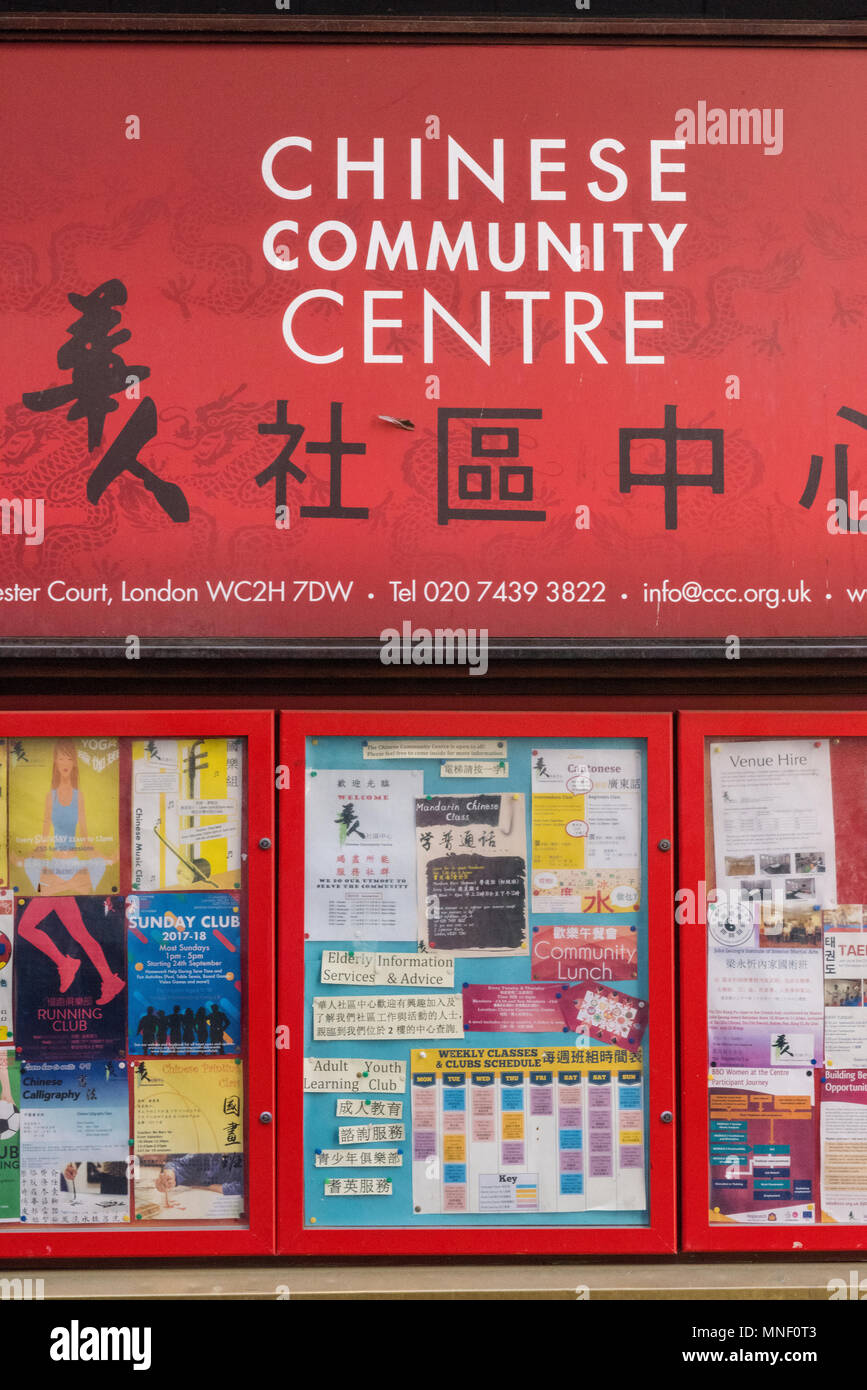 advertisements on a notice board in china town leicester square in central london. Chinese community centre and culture in the UK. Diversity inclusion Stock Photo