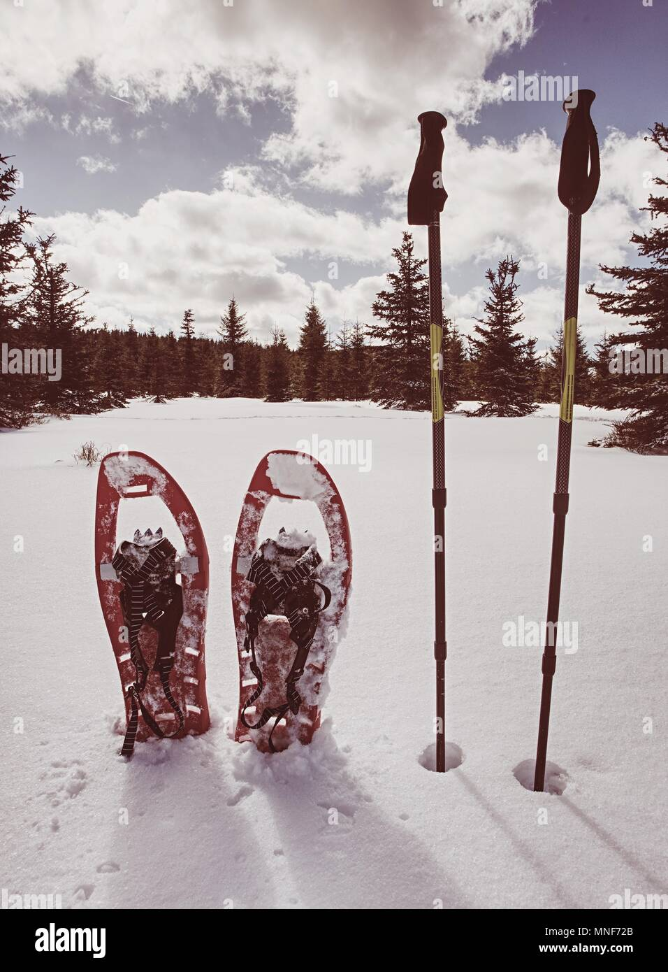 Snowshoes in snow. Winter trail over snowy hills and mountains. Winter walks with forests and mountains.  Outdoor winter activity and healthy lifestyl Stock Photo