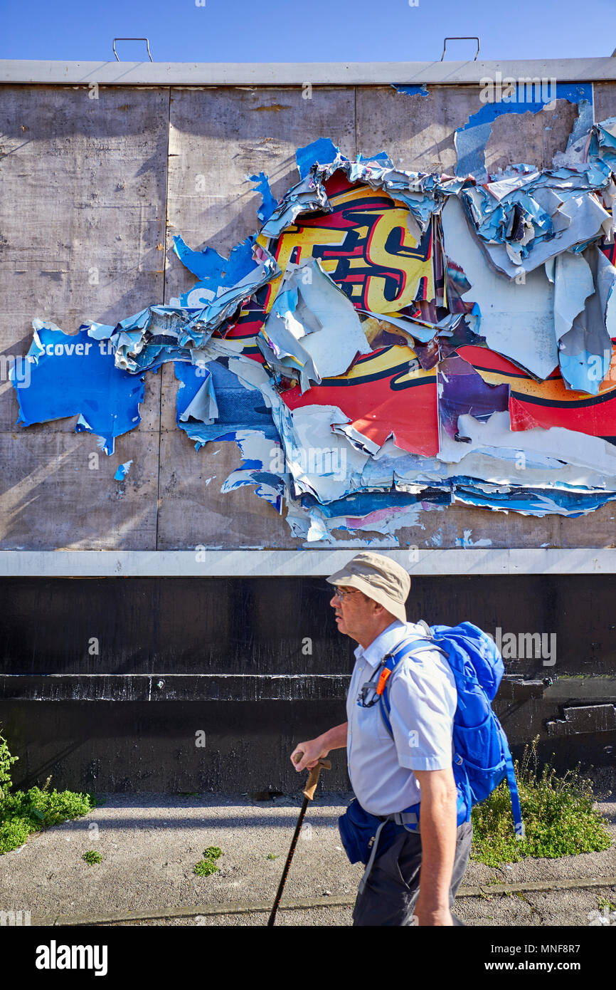 A hiker walks past a 48 sheet poster site that has old paper posters torn to shreds by wind and rain - Stock Image