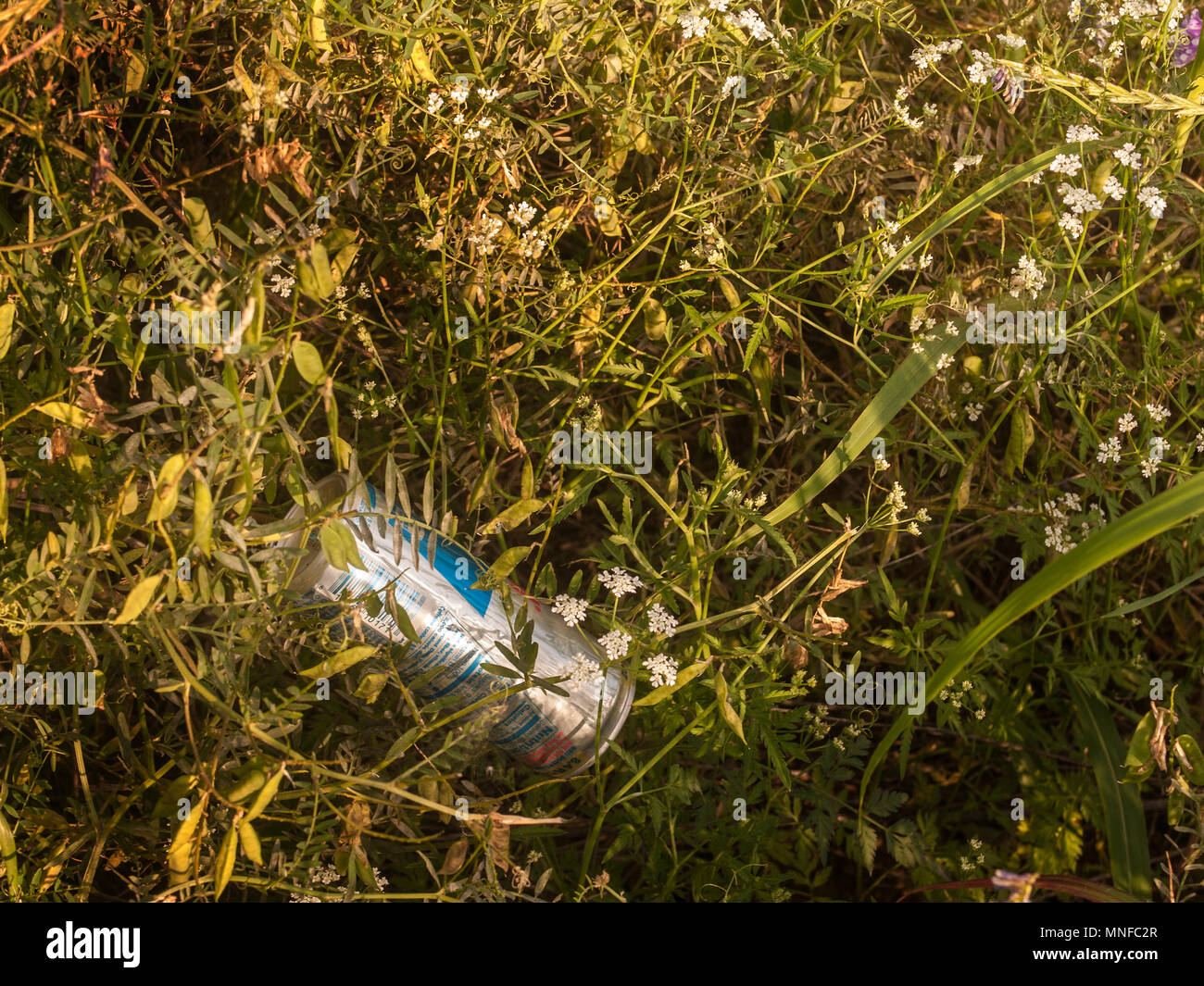 Just throw it away. What to do with all the trash. Hurt the eye as people just throw it away. It isn't natural - Stock Image