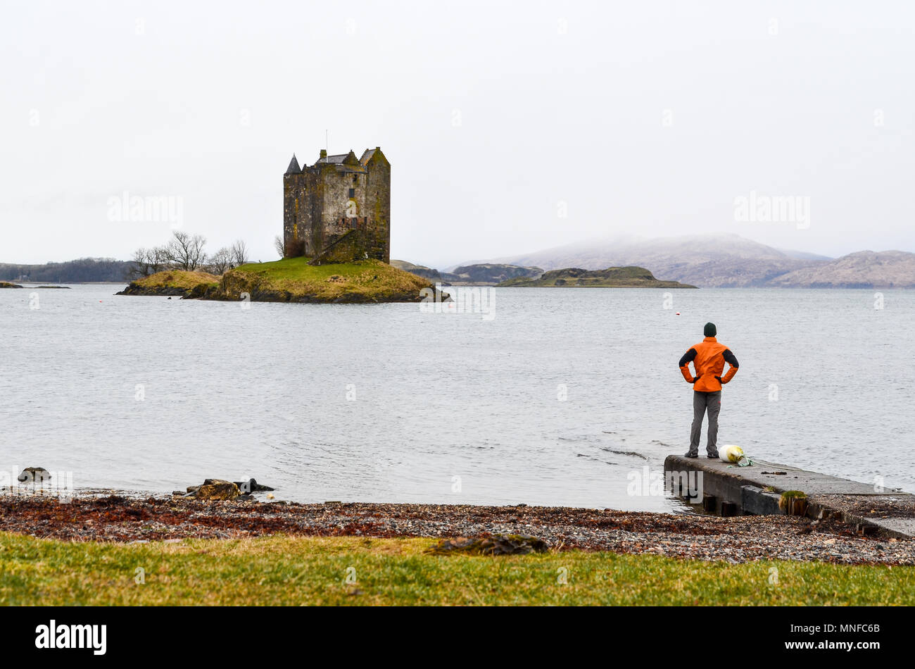 Man standing by a loch and looking at Castle Stalker, Scotland - Stock Image