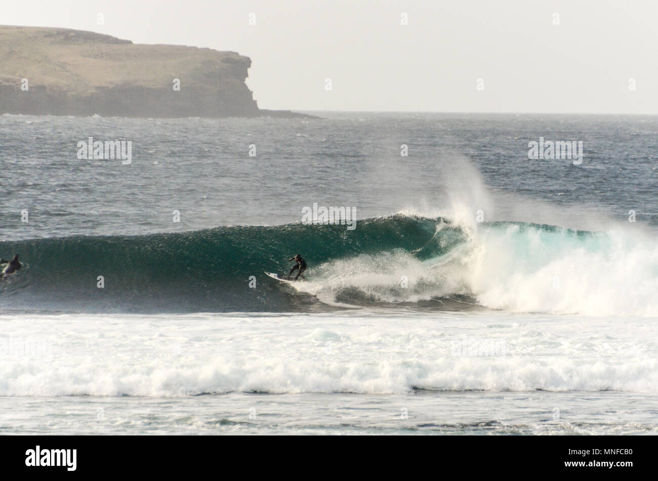 Surfer in a barel in Thurso, Highland, Scotland Stock Photo