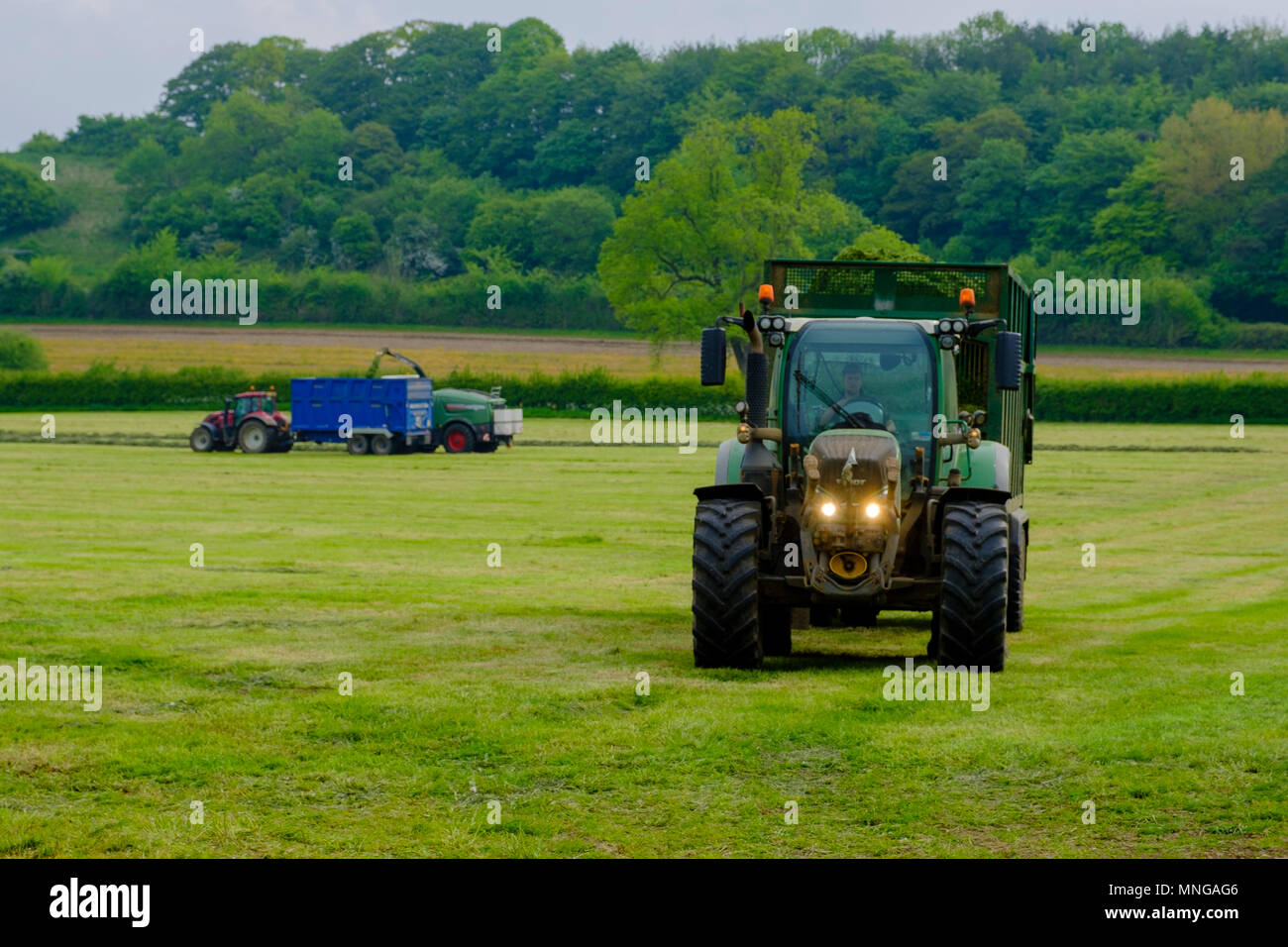 Life goes on in the countryside - silage gathering near Milborne Port, Dorset - Stock Image