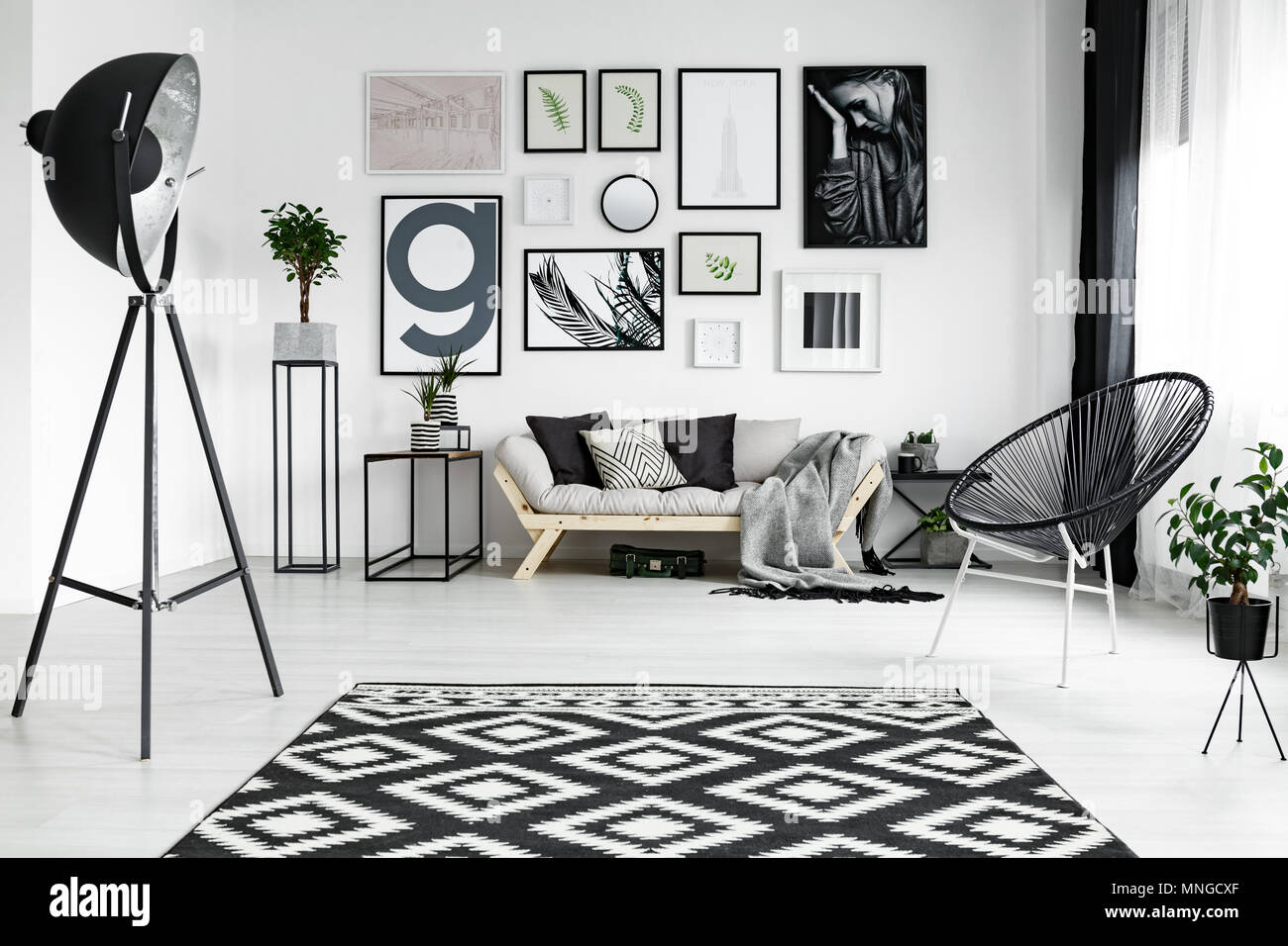 Stylish white living room with black accessories and plants ...