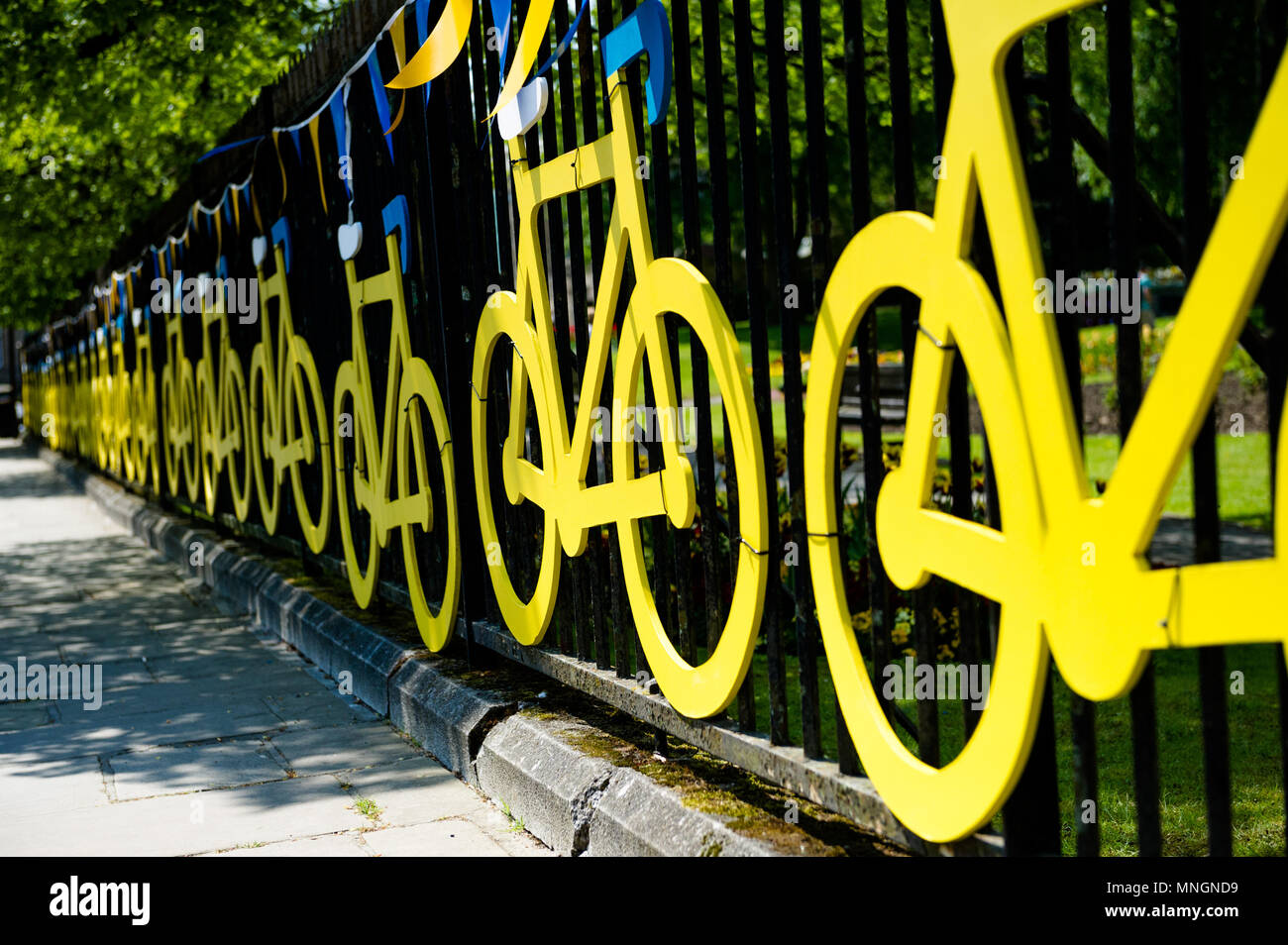 Tour de Yorkshire decor yellow wooden cycles attached to a metal fence in Richmond,Yorkshire. - Stock Image