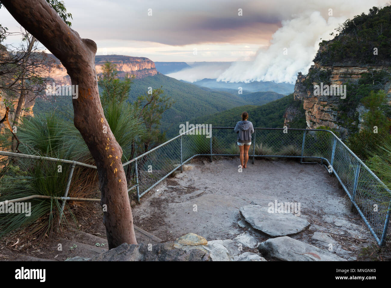 Girl at a bushwalking lookout with a view over a remote bushfire and smoke in the Blue Mountains, New South Wales, Australia. - Stock Image