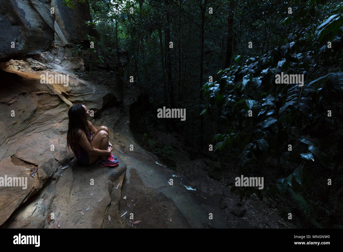 A pretty, beautiful girl hugs her knees in a dark, dimly lit forest in the Blue Mountains, Australia. - Stock Image