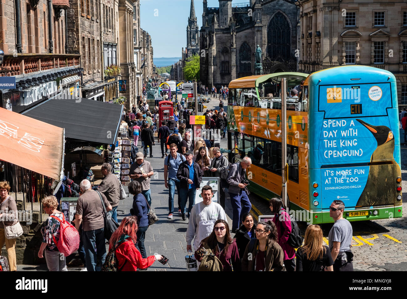 View along the Royal Mile with many tourists and tour bus in Old Town of Edinburgh, Scotland, UK - Stock Image