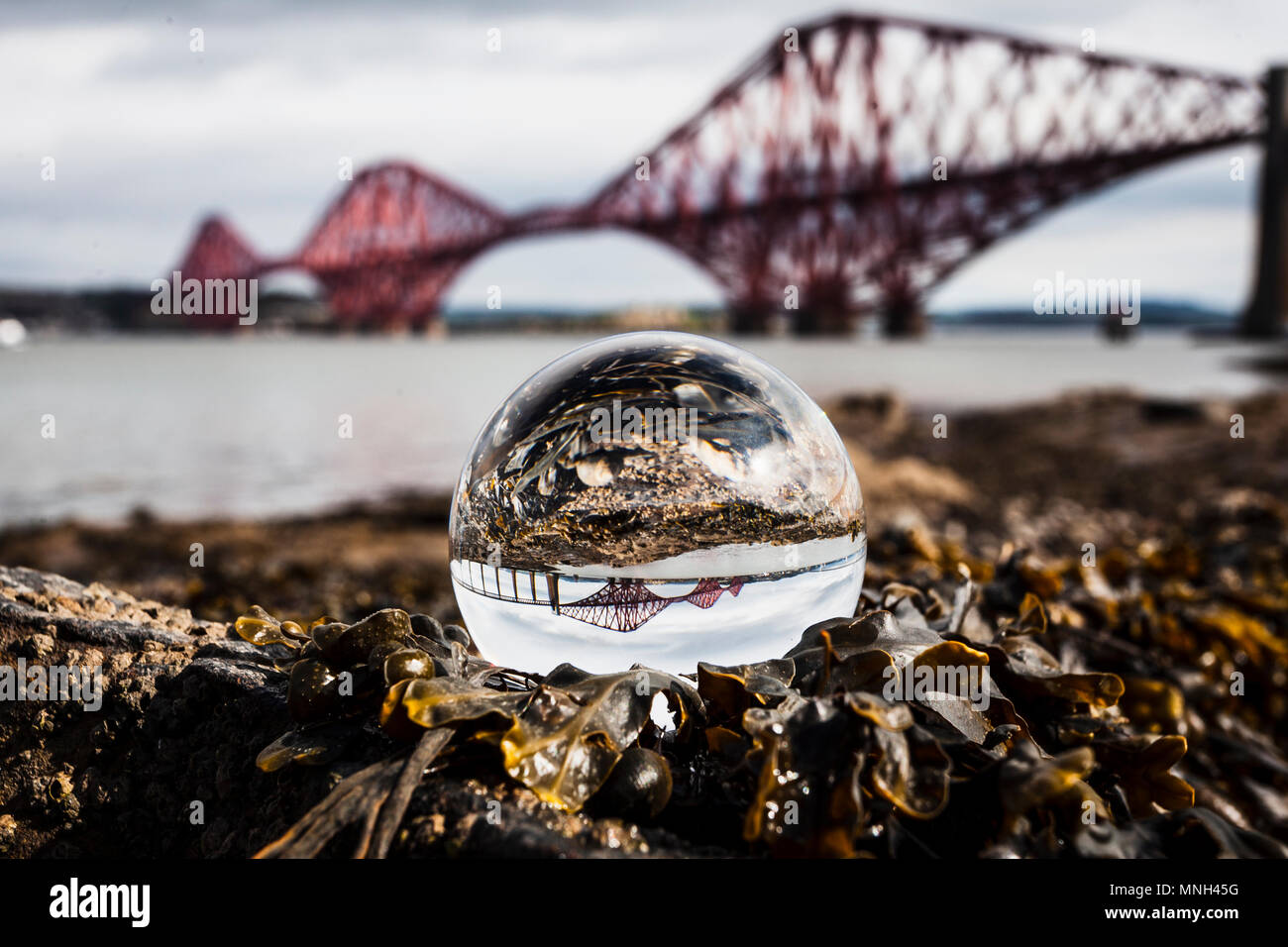 The Forth Bridge, Scotland viewed through a Lensball sat on seaweed on the beach at South Queensferry Stock Photo