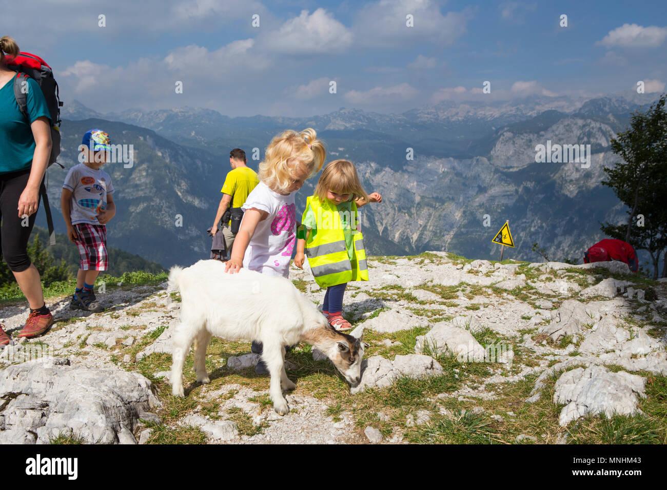 Two children cuddling baby goat at mount Vogel in Julian Alps, Slovenia - Stock Image