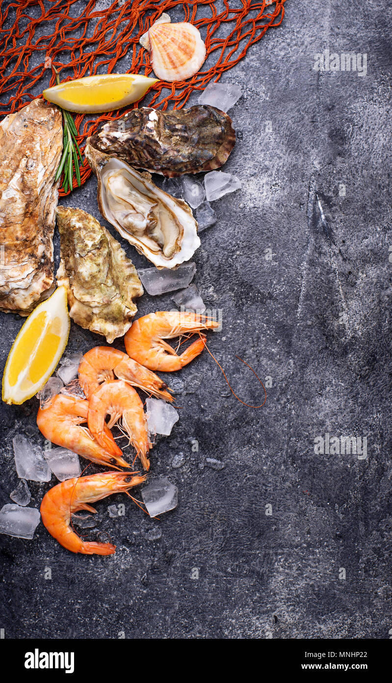 Shrimps and oysters. Seafood concept - Stock Image