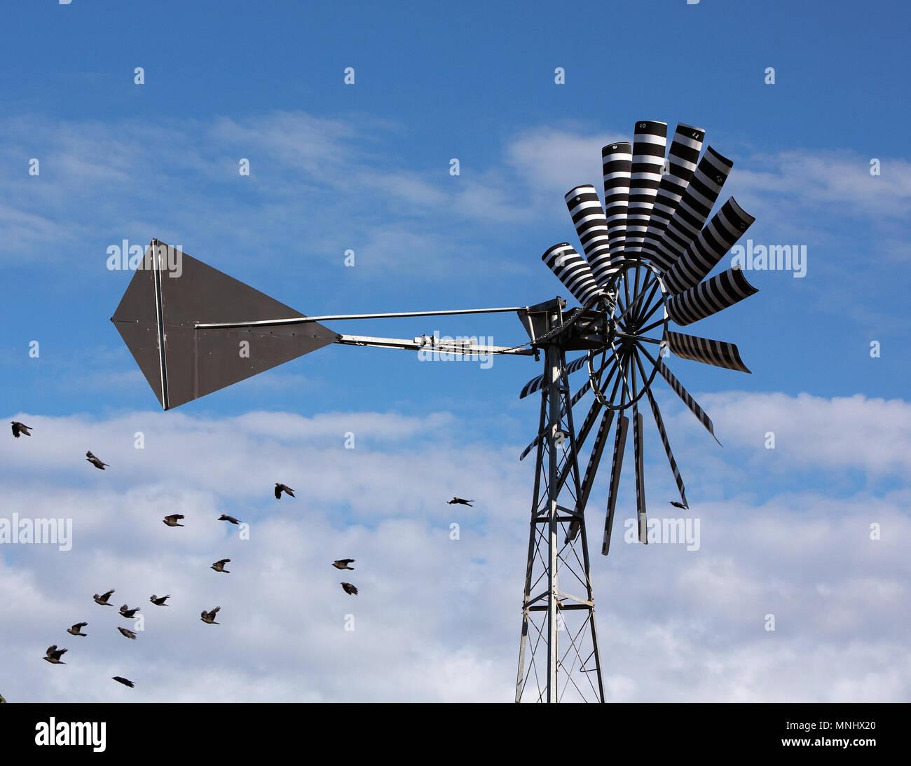 A multi-bladed windpump blue sky and clound with birds. - Stock Image
