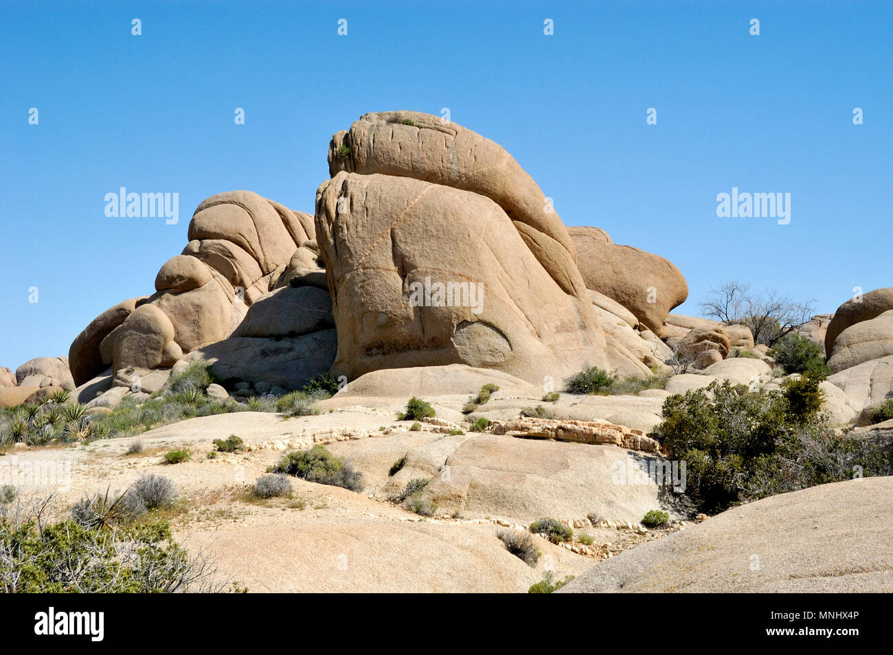 Indian Face Rock, Monzogranite rock pile, Aplitic veins, Jumbo Rocks, Joshua Tree National Park, CA 040410_0701 - Stock Image