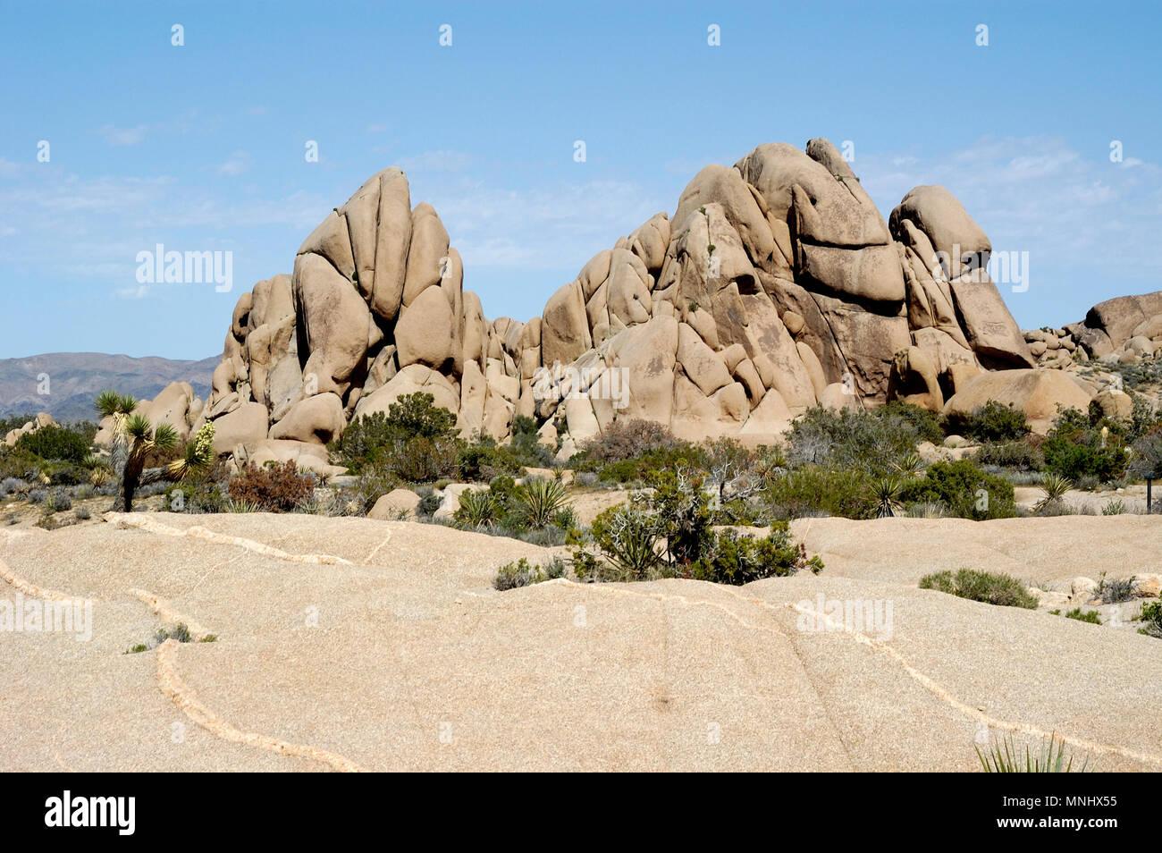 Monzogranite rock pile, Aplitic Veins, Jumbo Rocks, Joshua Tree National Park, CA 040410_0702 - Stock Image