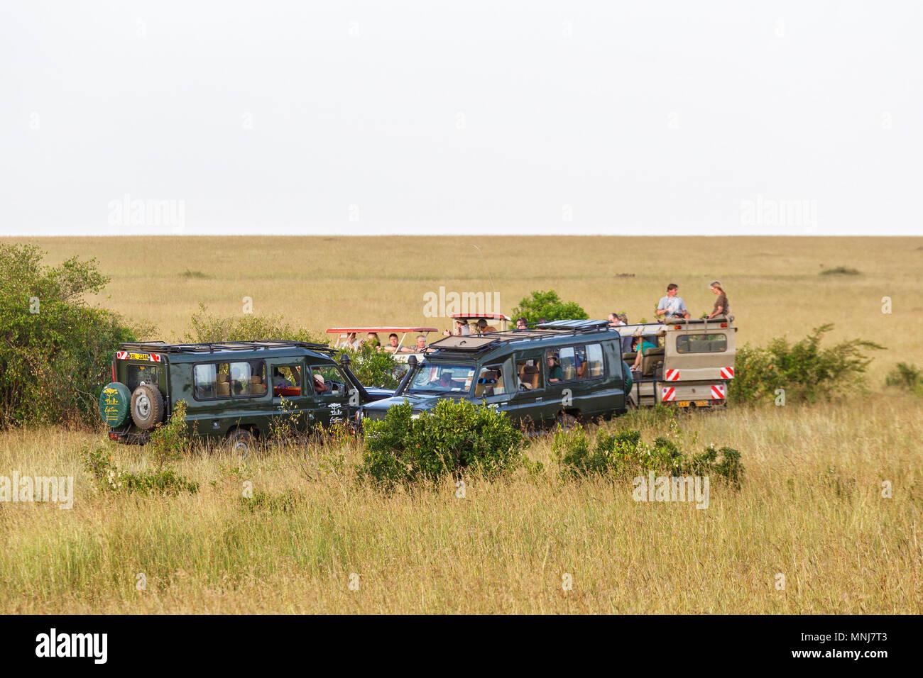 Safari game drive on the savannah in Masai Mara, Kenya - Stock Image