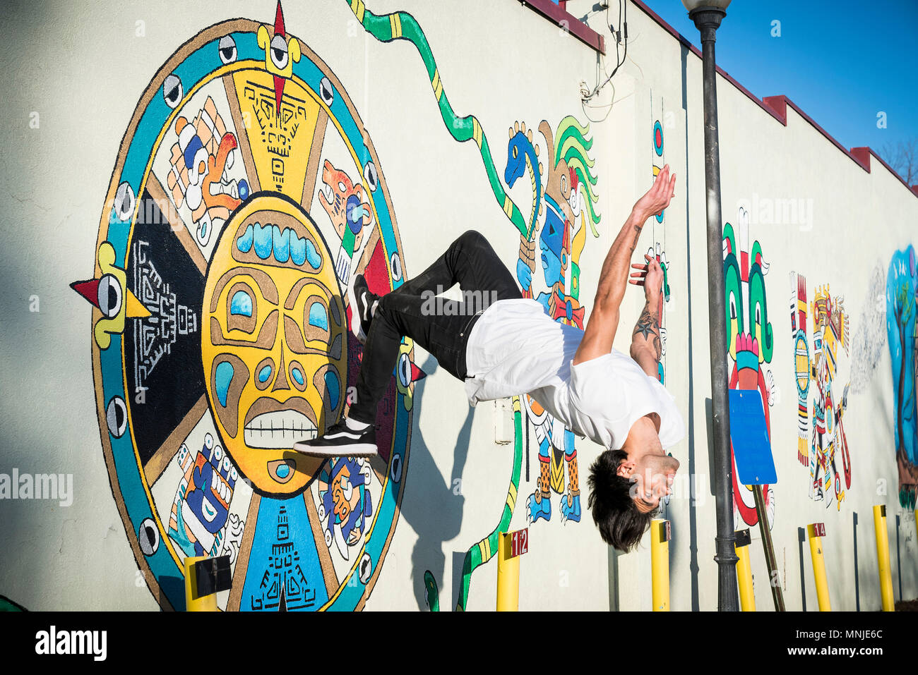 Young parkour athlete doing backflip off wall covered in street art, Denver, Colorado, USA - Stock Image