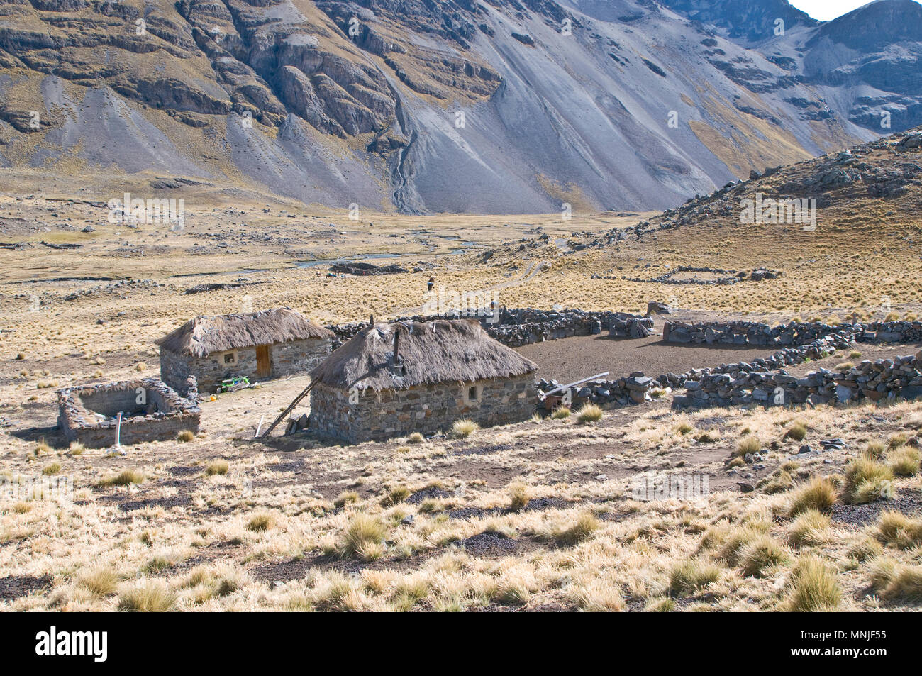 A farm high in the Bolivian Andes at over 12,000ft. - Stock Image