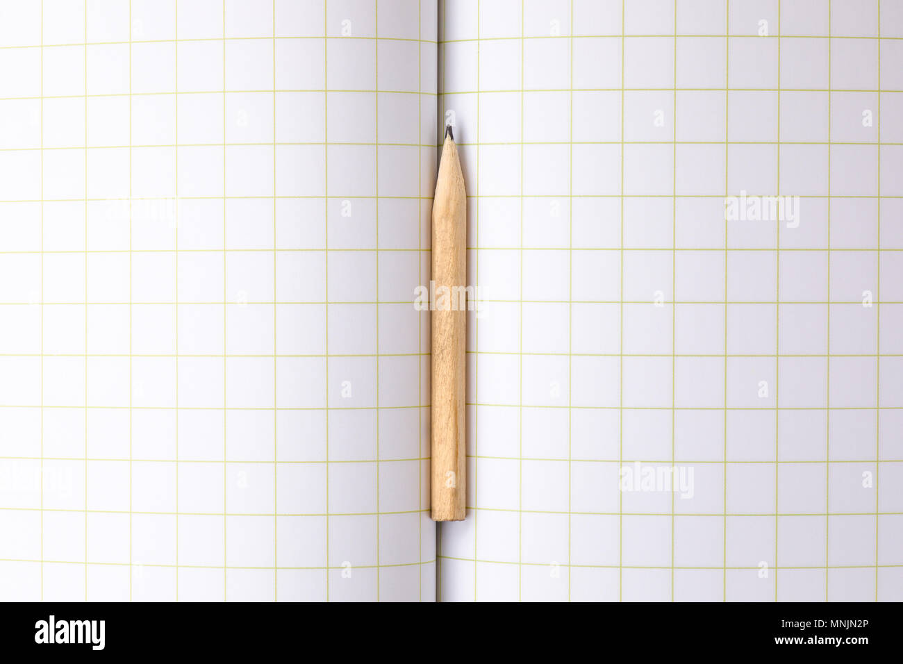 Short Pencil on a Squared Paper Copybook - Stock Image