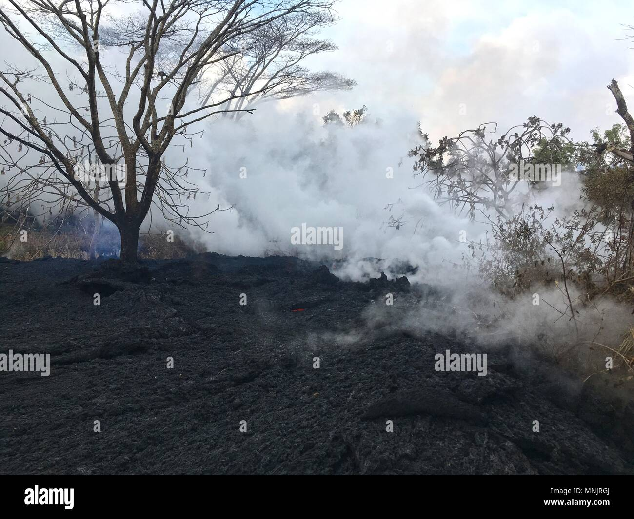 Lava and poisonous sulfur dioxide plumes rise from fissures along the eastern rift caused by the eruption of the Kilauea volcano May 16, 2018 in Pahoa, Hawaii. The recent eruption continues destroying homes, forcing evacuations and spewing lava and poison gas on the Big Island of Hawaii.Stock Photo