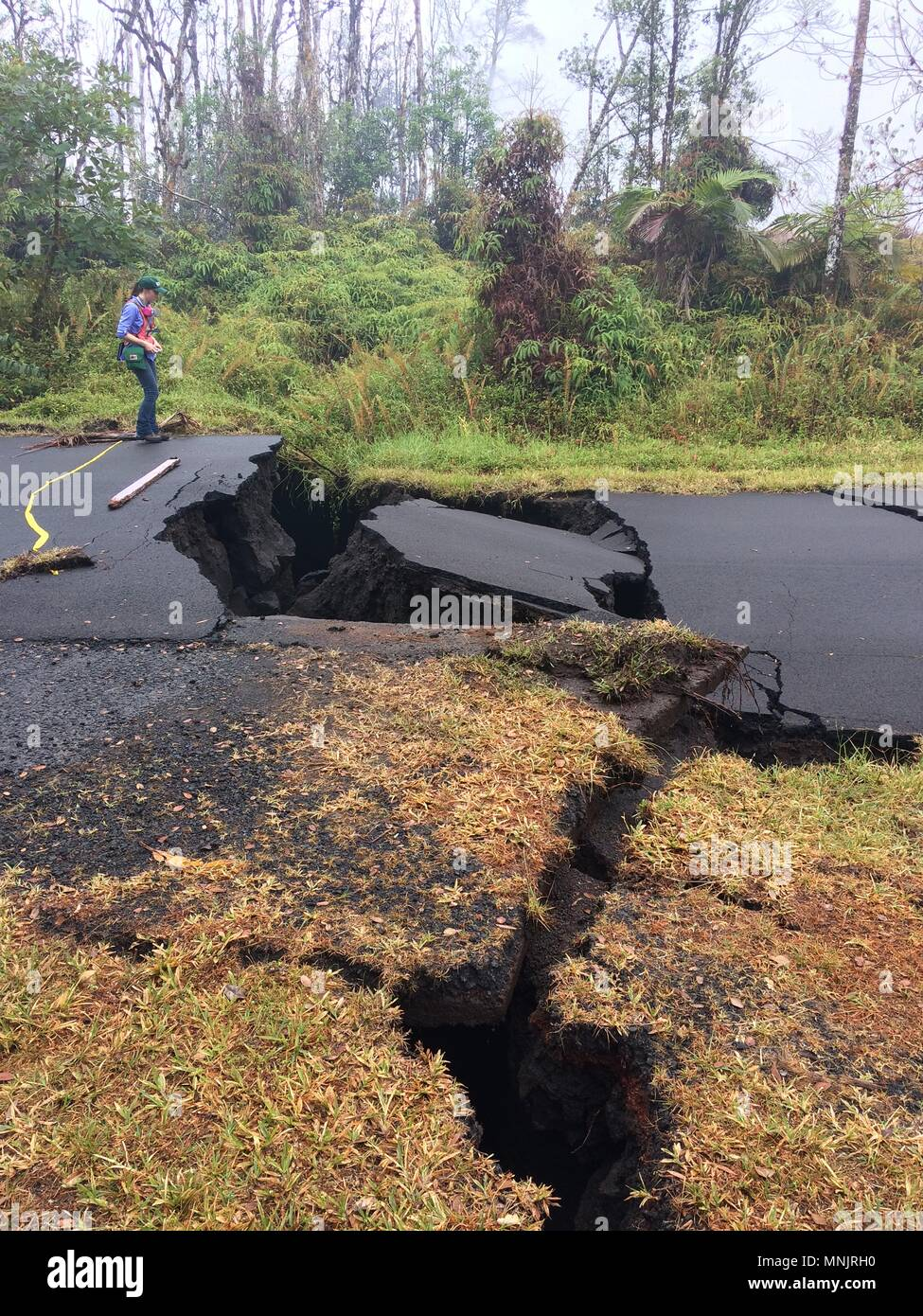 A USGS scientist views ground cracks along Nohea Street in Leilani Estates caused by the eruption of the Kilauea volcano May 17, 2018 in Pahoa, Hawaii. Stock Photo