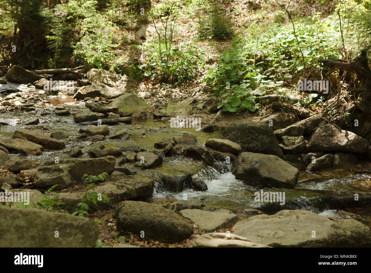 small river in europen mountins - Stock Image
