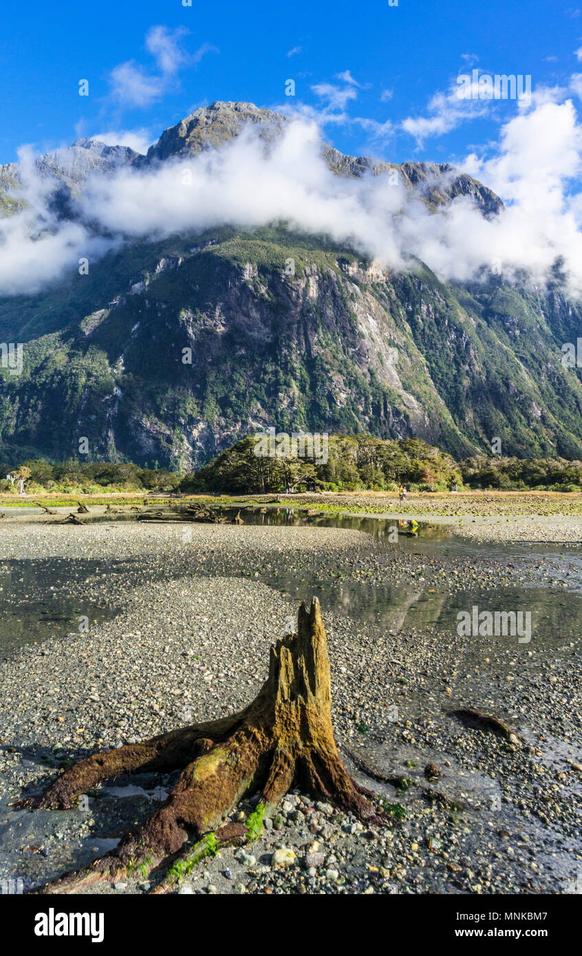 Milford sound New Zealand Milford sound Mitre peak fiordland national park southland new zealand fjordland national park South Island nz - Stock Image