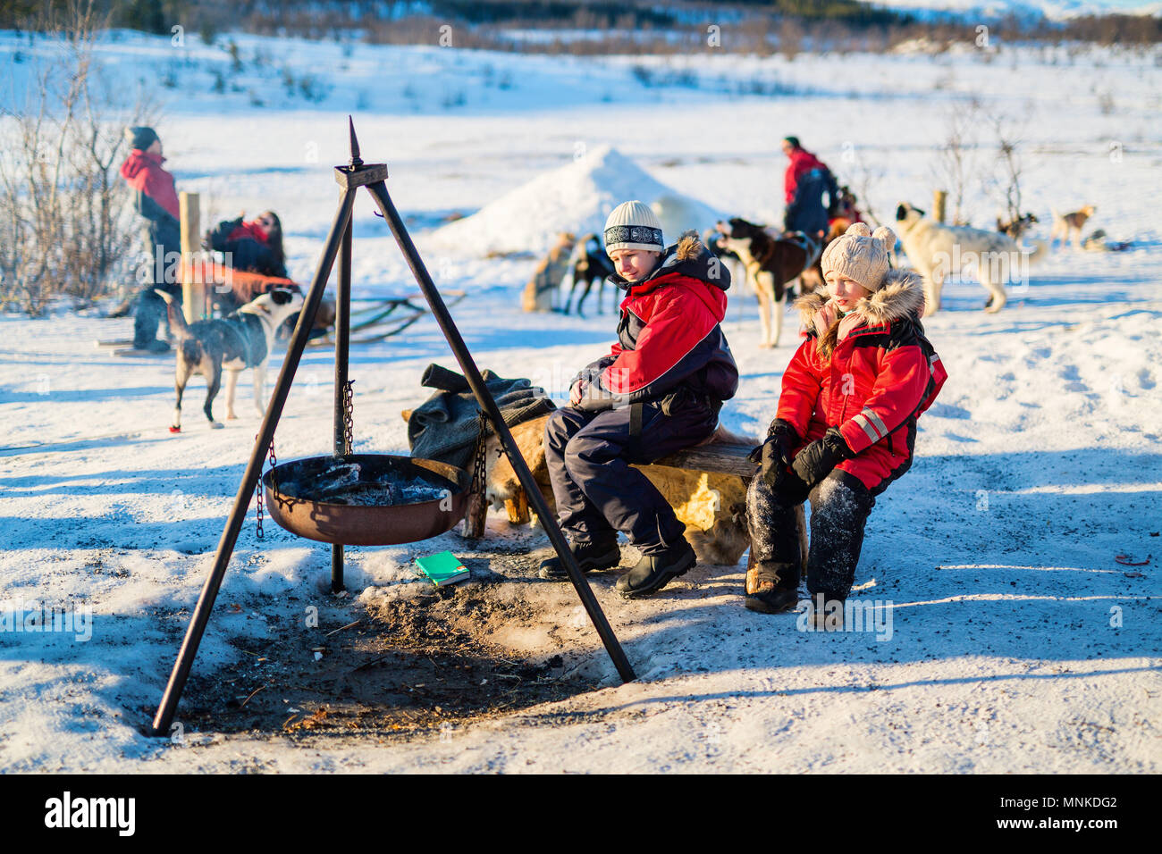 Adorable little girl and cute boy outdoors on beautiful winter day having fun visiting husky farm - Stock Image