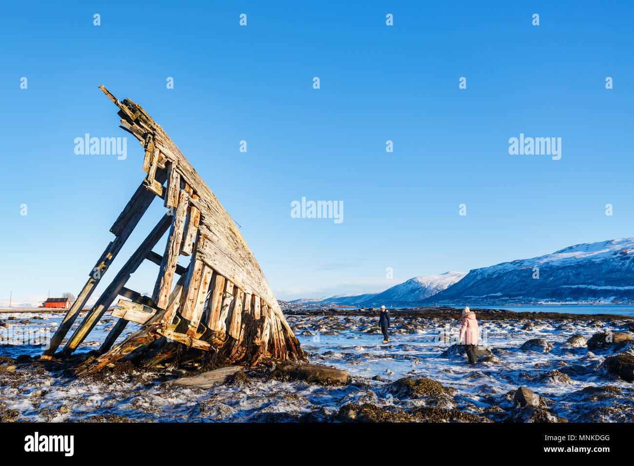 Kids exploring shipwrecked wooden viking boat in Northern Norway - Stock Image