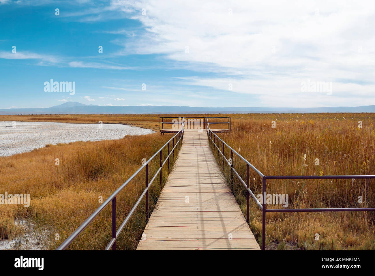 Minimalist landscape (walkway for visitors) by Laguna Cejar, Chile - Stock Image
