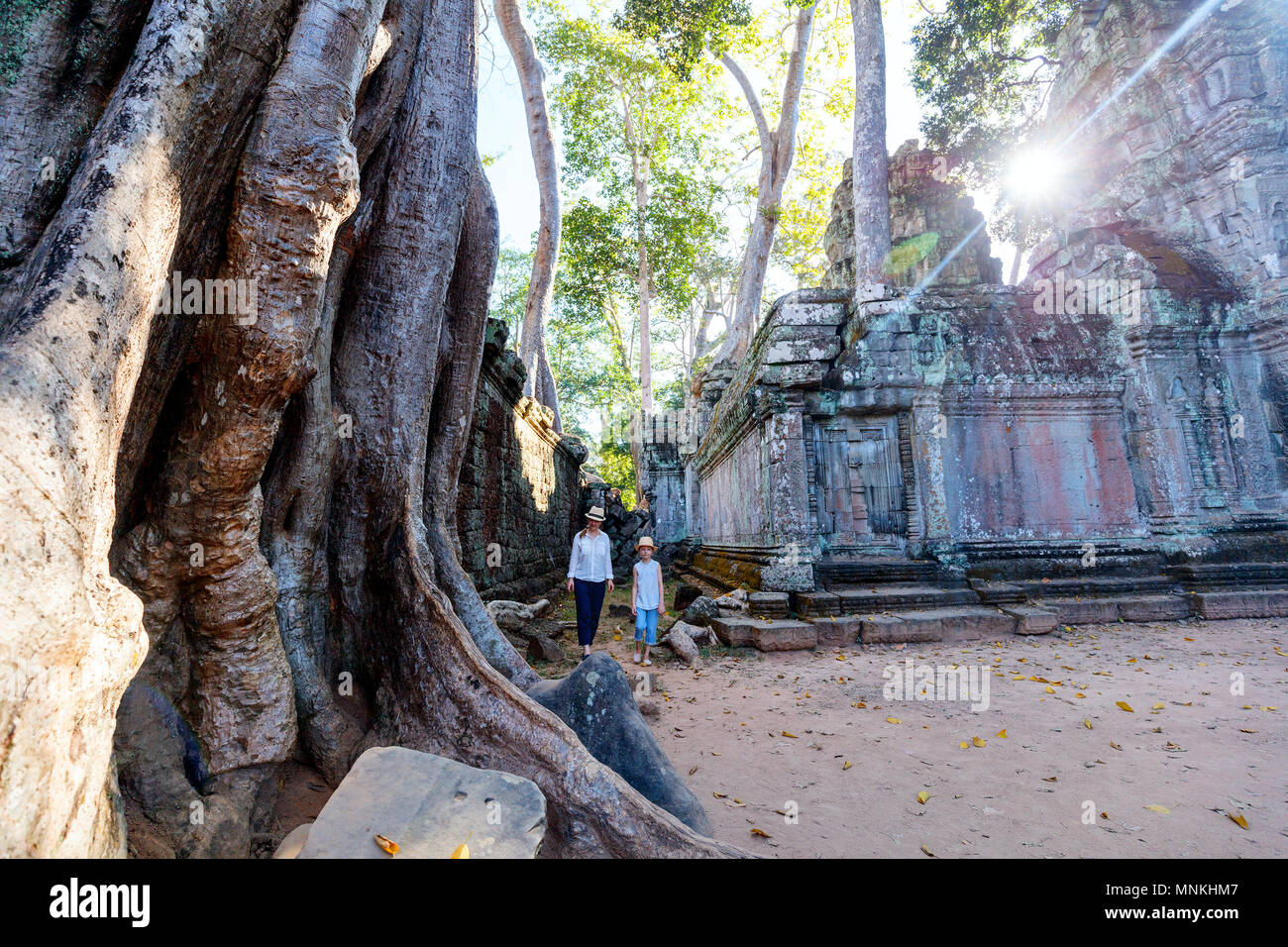Family visiting ancient Ta Prohm temple in Angkor Archaeological area in Cambodia - Stock Image