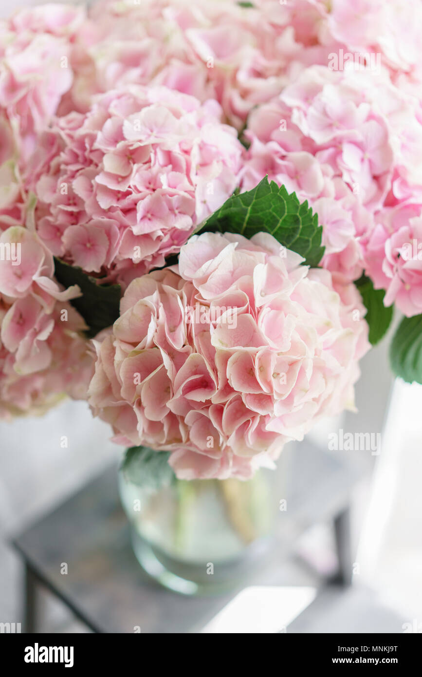 Beautiful hydrangea flowers in a vase on a table bouquet of light beautiful hydrangea flowers in a vase on a table bouquet of light pink flower decoration of home wallpaper and background vertical photo mightylinksfo