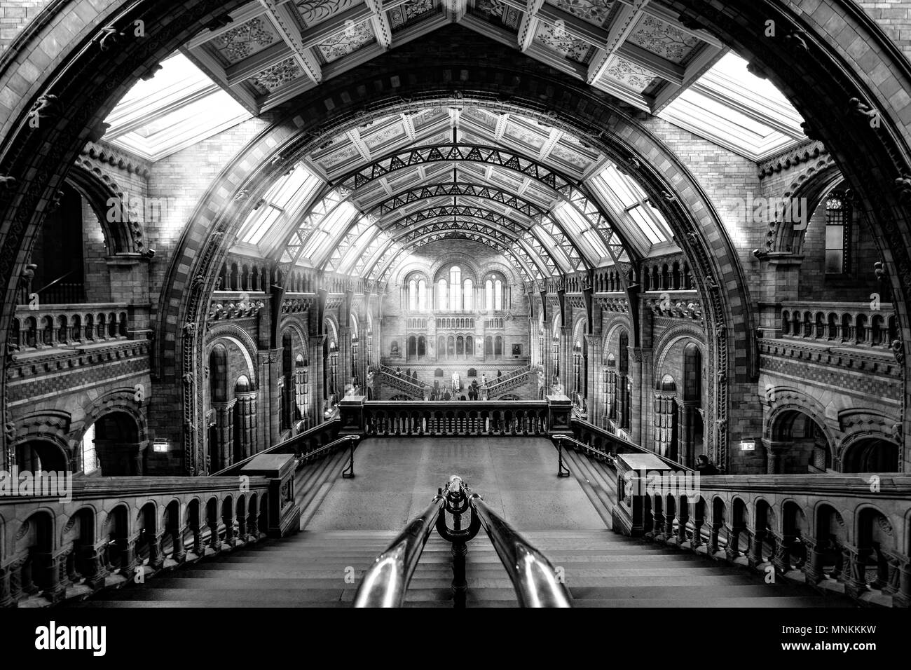 B&W version of the central hall of the Natural Histoy Museum in London employing some new lighting processing techniques as explained here: https://ww - Stock Image