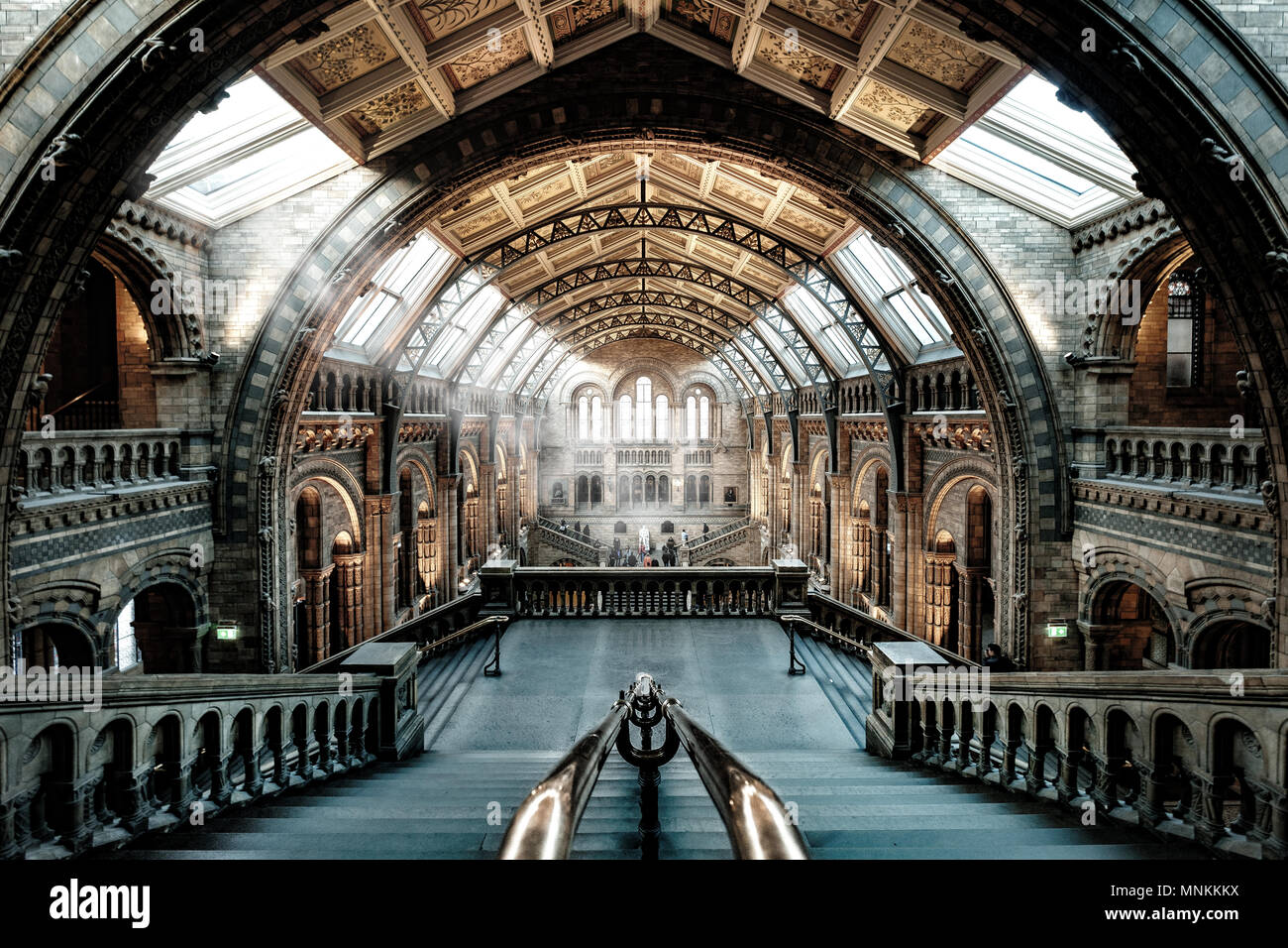 The central hall of the Natural Histoy Museum in London employing some new lighting processing techniques as explained at https://www.youtube.com/watc - Stock Image
