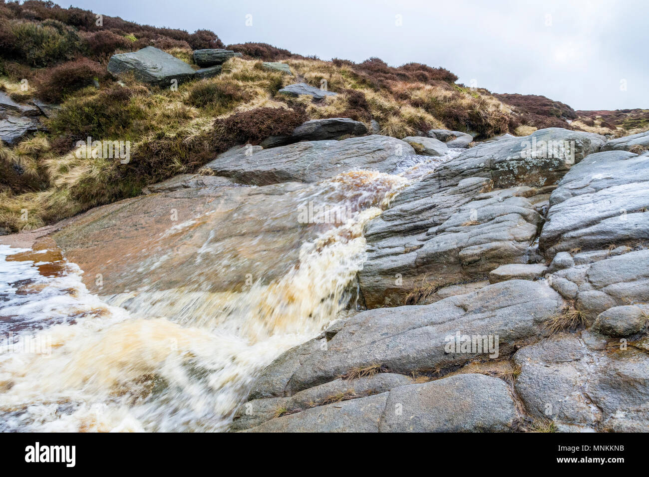 Fast flowing stream containing peat rushing over rocks on Kinder Scout moorland, Derbyshire, Peak District National Park, England, UK - Stock Image