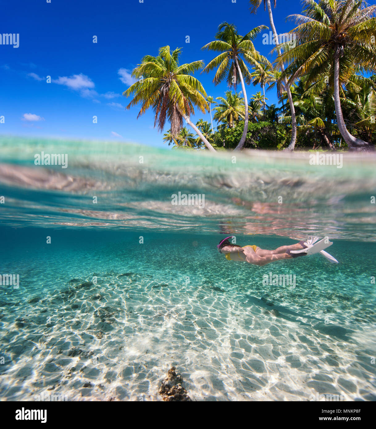 Woman swimming underwater in clear tropical waters in front of exotic island - Stock Image