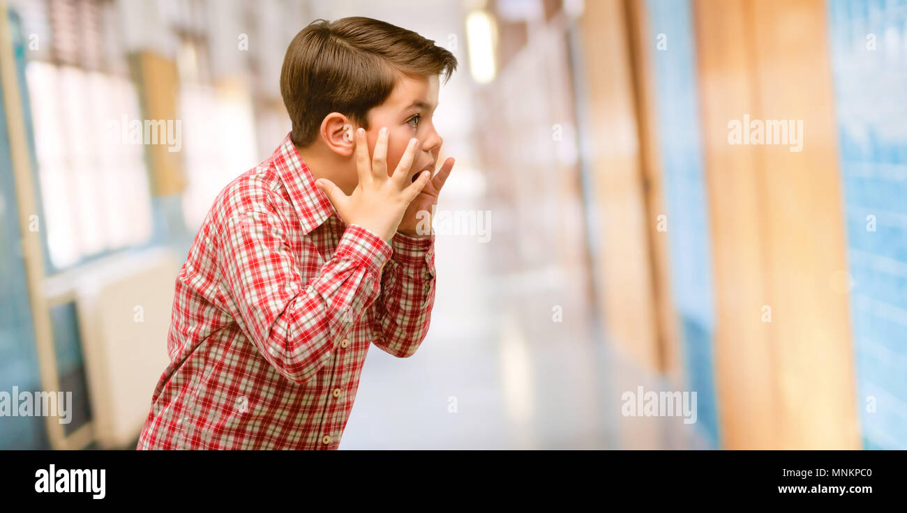 Handsome toddler child with green eyes stressful keeping hands on head, terrified in panic, shouting at school corridor - Stock Image