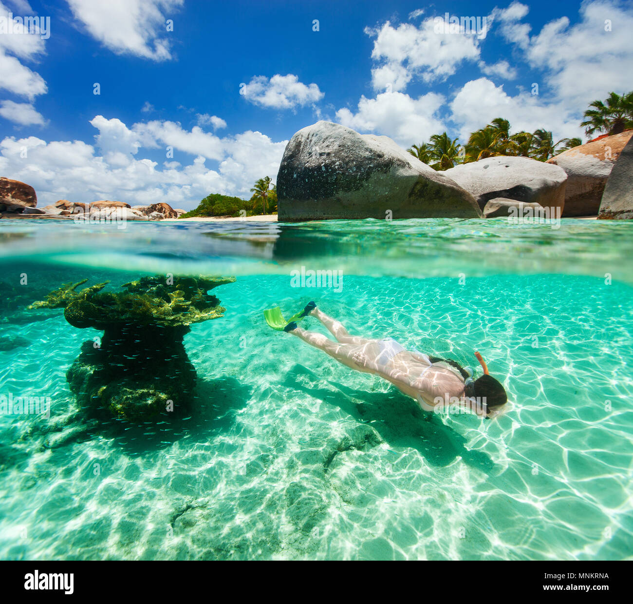 Split photo of young woman snorkeling in turquoise ocean water among corals and tropical fish on Virgin Gorda, British Virgin Islands, Caribbean - Stock Image
