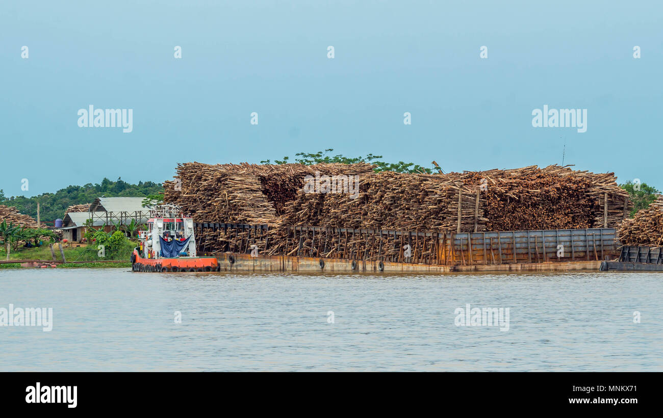 barge full of timber as raw materials for wood chips industry mahakam river outback of borneo stock photo alamy alamy