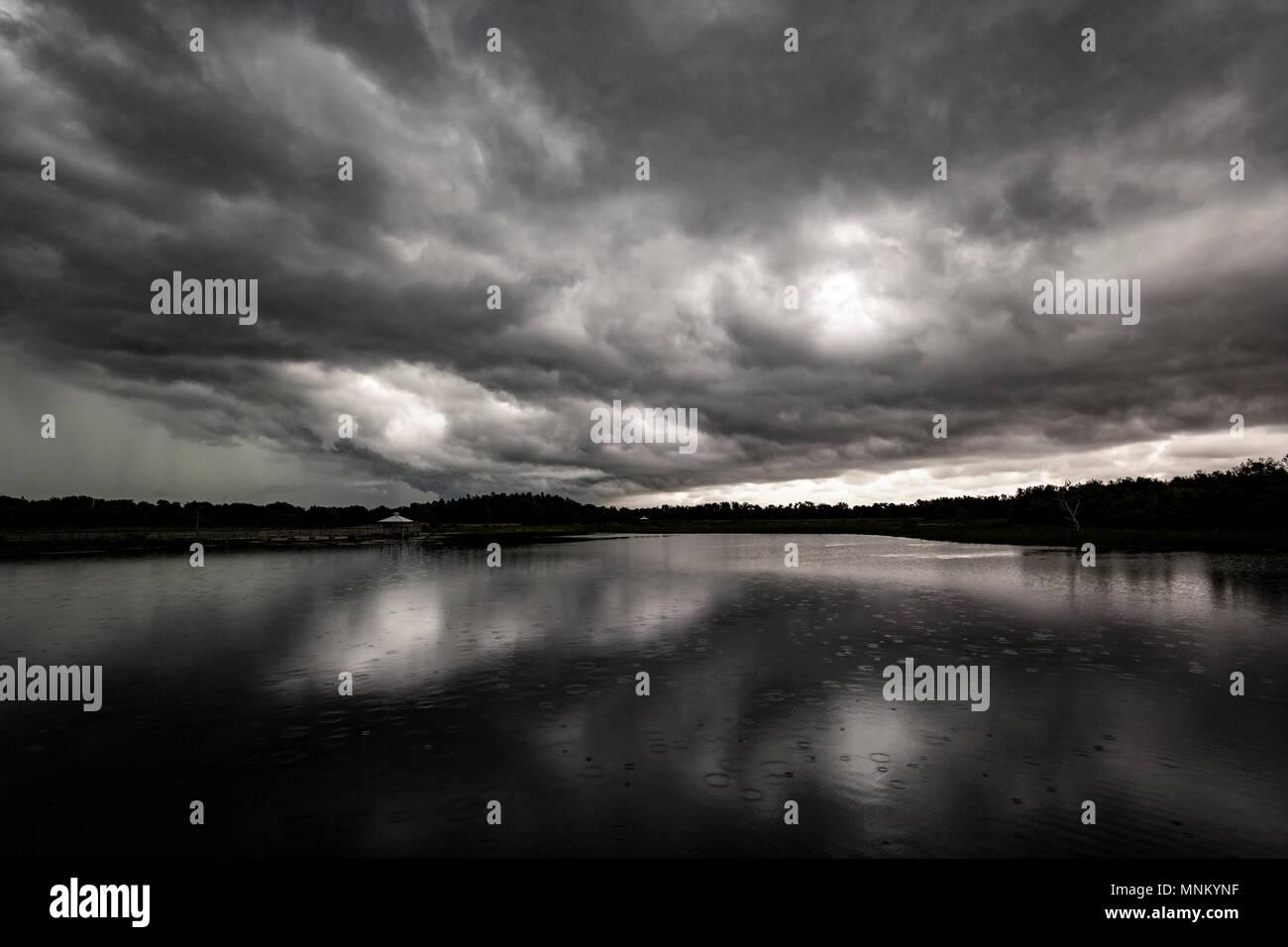 Thunderstorm over Green Cay Wetlands - Boynton Beach, Florida, USA - Stock Image
