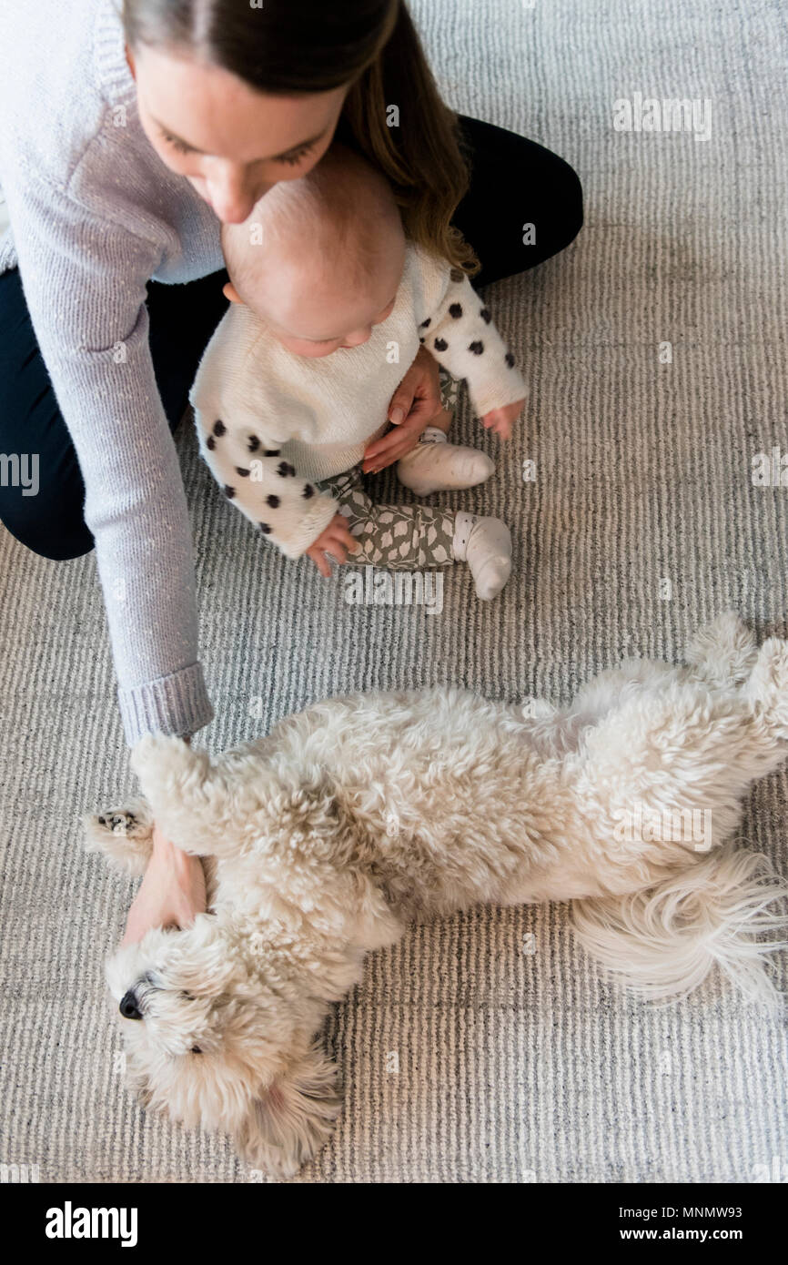 Mother and baby daughter (18-23 months) playing with dog - Stock Image